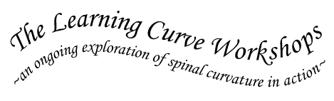 the-learning-curve-workshop.logo